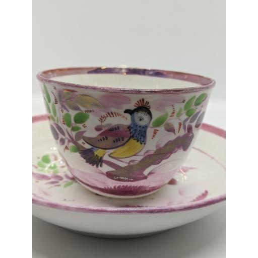 New Hall Bute shape teacup and saucer c 1820
